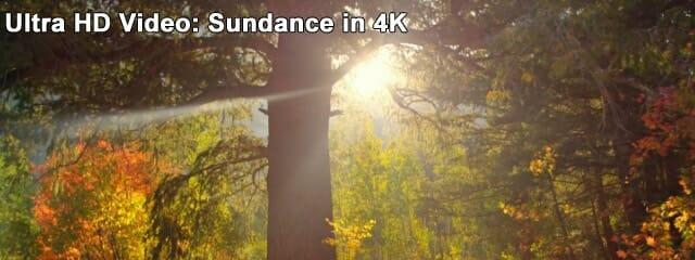 ultra-hd-sundance-in-4k