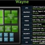 """Details zu """"Wayne"""""""