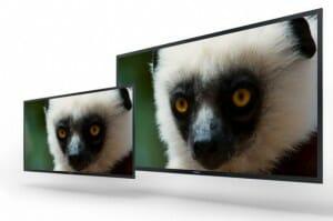 4K OLED Bildschirme