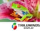 Sony Triluminos Technologie | Bild: Sony.de