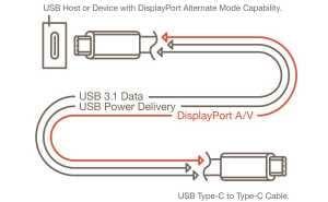 USB 3.1 Type-C DisplayPort Alt Mode