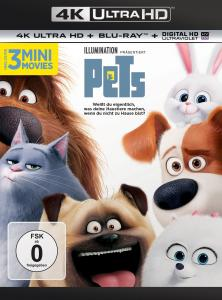 Pets Front-Cover