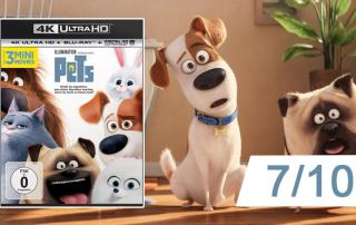 PETS 4K Blu-ray Review