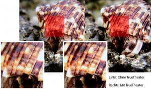 Der Direktvergleich zwischen dem Standardbild und dem TrueTheater HDR-optimierten Version zeigt ein deutlich kontrast- und detailreicheres Bild wieder