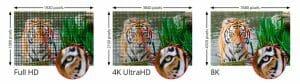 Der Detailgrad bei 8K Aufnahmen ist nochmals besser als bei 4K Ultra HD