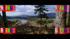 Screenshot des Testvideos von rtings.com