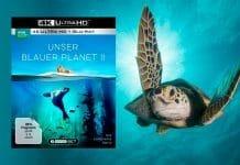 """""""Unser blauer Planet 2"""" 4K Blu-ray im Test - eine fast perfekte Produktion!"""