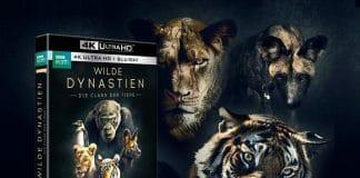 WILDE DYNASTIEN - Die Clans der Tiere erscheint auf 4K UHD Blu-ray