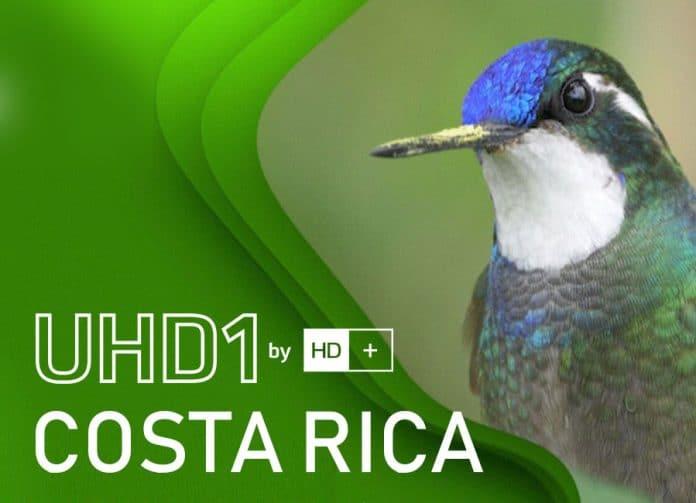 HIGH VIEW präsentiert noch mehr 4K Inhalte auf UHD1 by HD+, unter anderem Dokus von PLANET und WAIDWERK