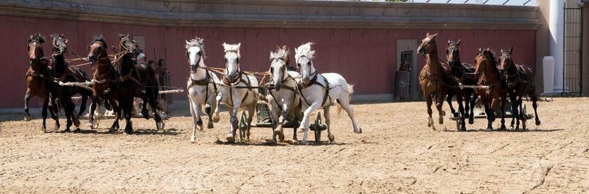 Reiter und Pferde riskierten in der Arena des Circus Maximus ihr Leben