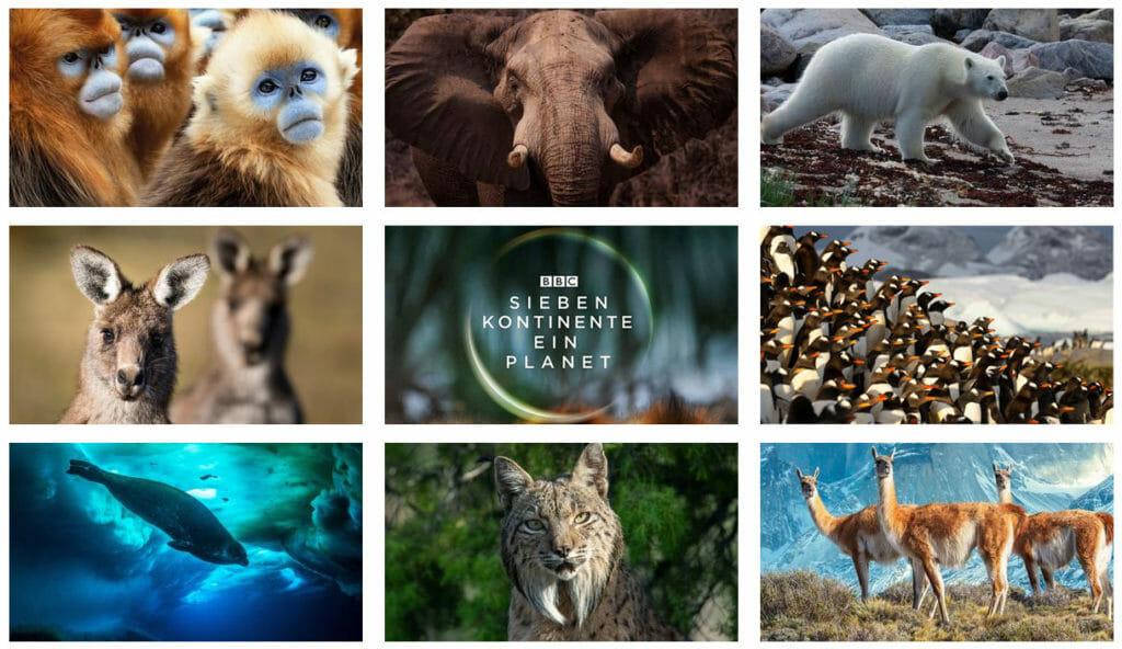 Sieben Kontinente - Ein Planet: Ein besonderer Doku-Leckerbissen