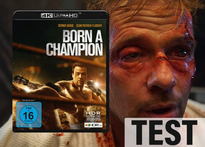 Born A Champion auf 4K Blu-ray im Test